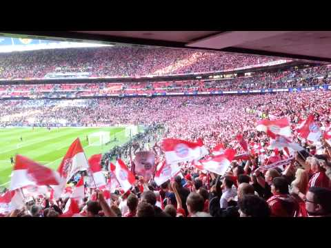 Stern des Südens live in Wembley