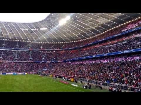 Bayern Munich Allianz Arena Goal Celebrataion