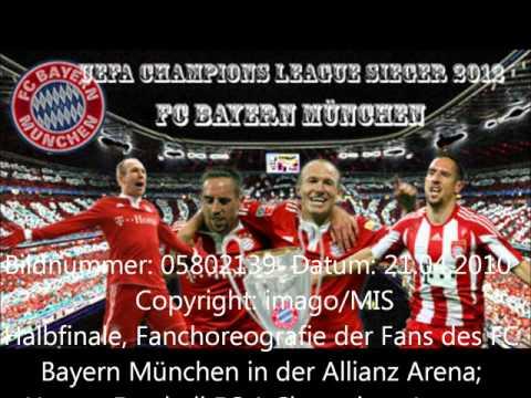 Fc Bayern Stern des Südens (neu).