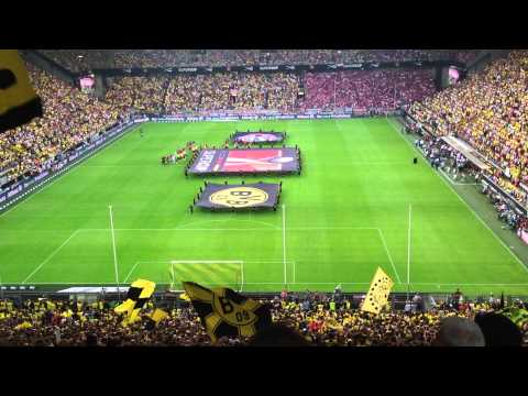 Supercup 2013: Dortmund & Bayern players entering the pitch